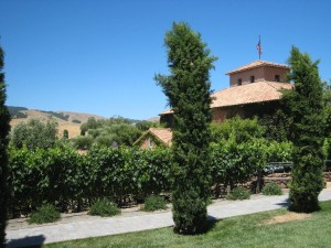 Viansa Winery, Sonoma County California