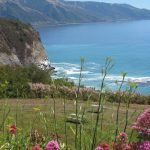 California Central Coast: Coastline, Castle, and Chardonnay