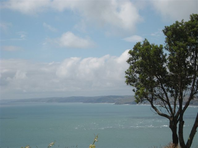 View from Solscape Eco-resort, just out of Raglan on New Zealand's West Coast