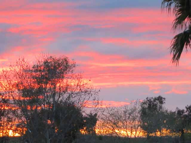 Early March Sunset in Livermore, California