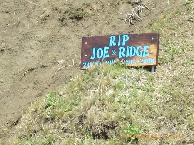 RIP Joe and Ridge