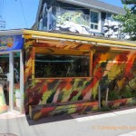 Two Colorful Toronto Neighborhoods
