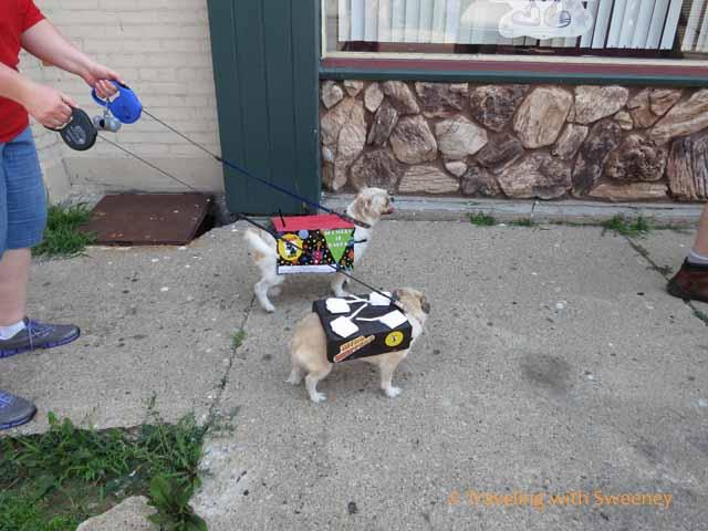 Dogs in Kiddie Bike & Pet Parade, Marinette