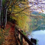 Autumn Abroad: Best Fall Destinations in Europe