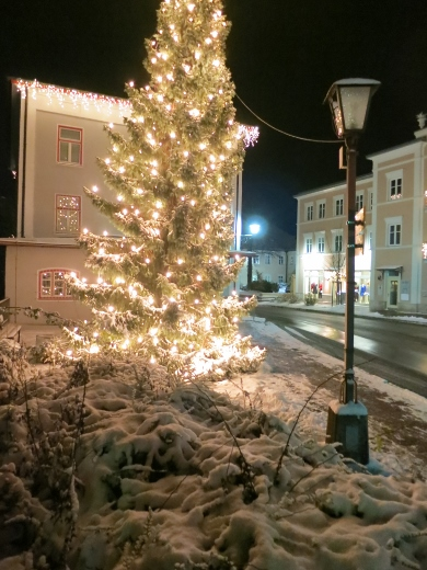 """Tree lights in Prien"""