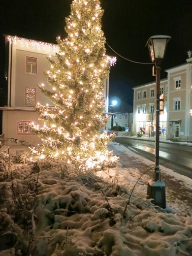 """Tree lights in Prien"""