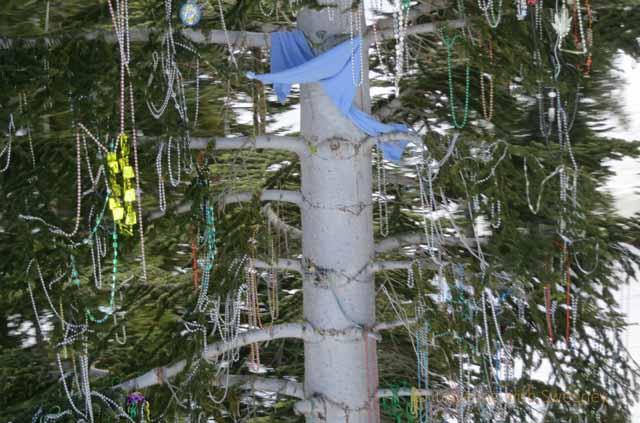 """Festive beads adorn the trees next to ski lift at North Lake Tahoe ski resort"""