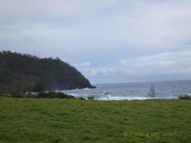 """View of Hana coastline while riding on horseback, Maui"""