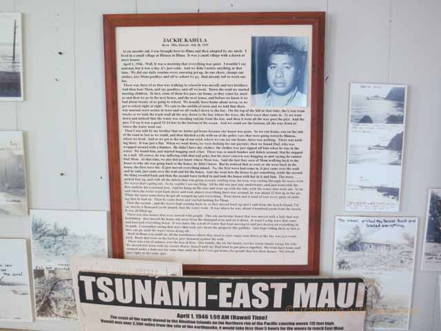 """News clippings and information about the 1946 tsunami at the Hana Cultural Center"""