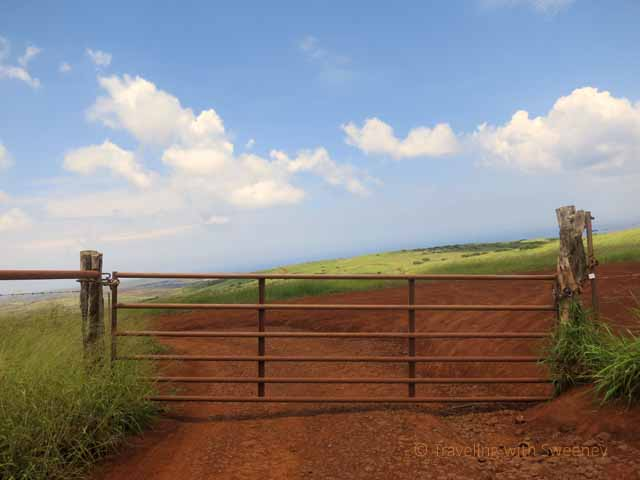 """Gate at the entrance of a private road in the lush Molokai countryside"""