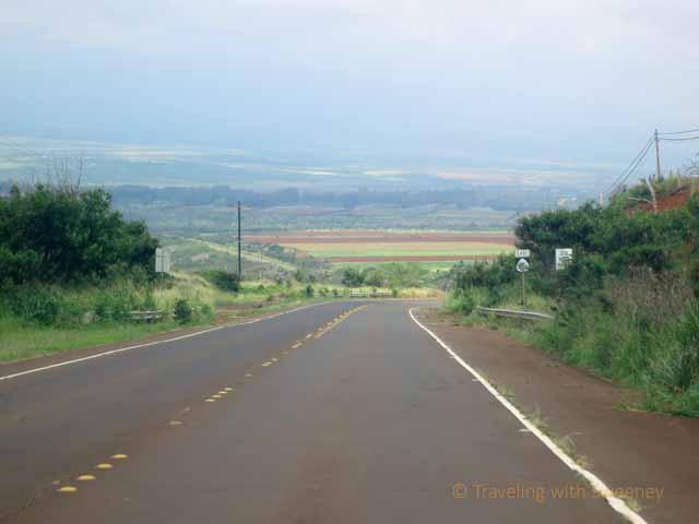 """Highway on the west side of Molokai"""