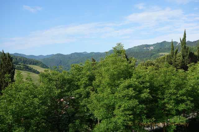 """""""The hills of Emilia-Romagna"""""""