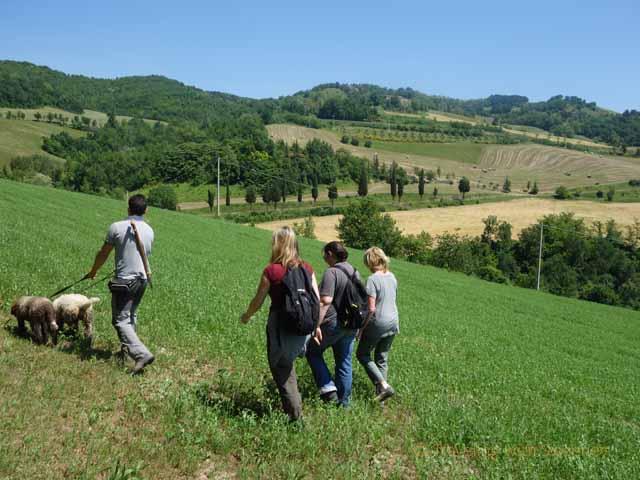 """Matteo Camel of Al Vecchio Convento leading the truffle hunting travel bloggers"""