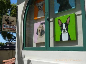 """Diggidy Dog, a dog and cat boutique in Carmel, California"""