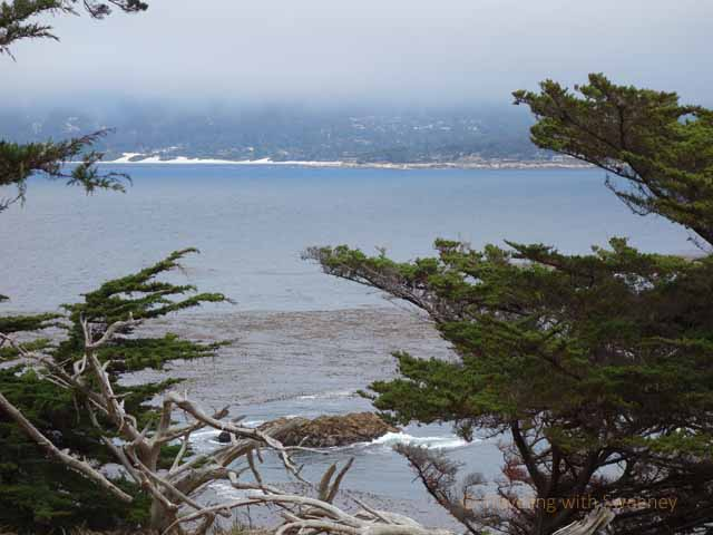 """View of Carmel from across the bay at Point Lobos State Natural Reserve"""
