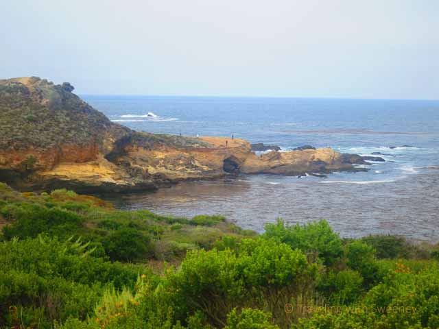 """Point Lobos State Natural Reserve:"