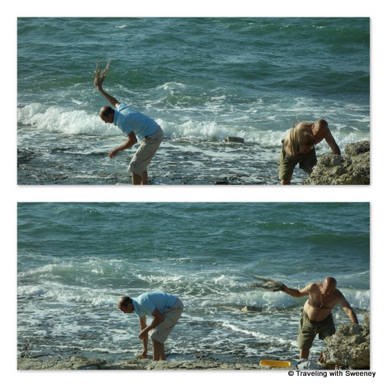 """Fishermen tenderizing octopuses on the rocks in Bari"""