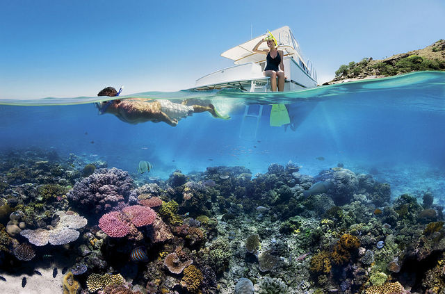 """""""Snorkelling the Great Barrier Reef by North Queensland Tourism"""""""
