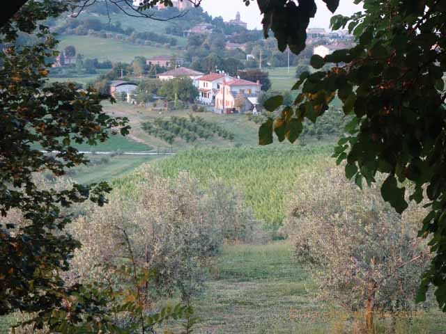 """View from the hilltop at Collina dei Poeti"""
