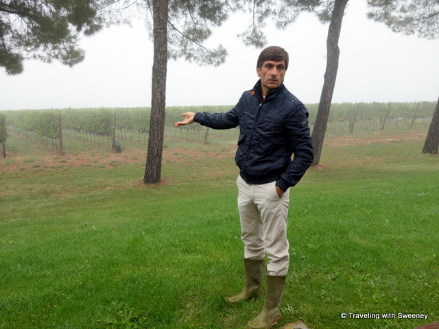 """Riccardo Castaldi, Senior Viticulturalist at Tenuta Masselini in Serra, Italy"""