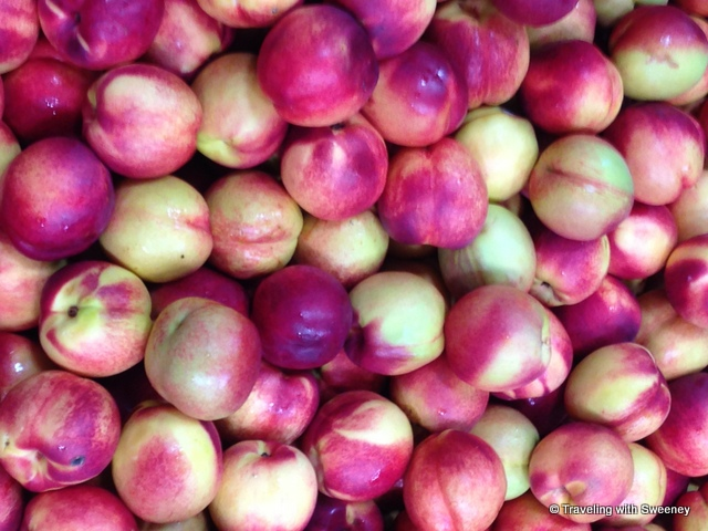 """""""Nectarines at APOFruit Plant in Cesena, Italy"""""""