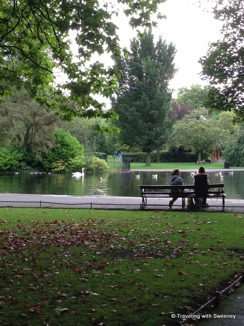 """Swans at St. Stephen's Green in Dublin, Ireland"""