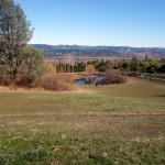 Going Full Circle at Long Meadow Ranch