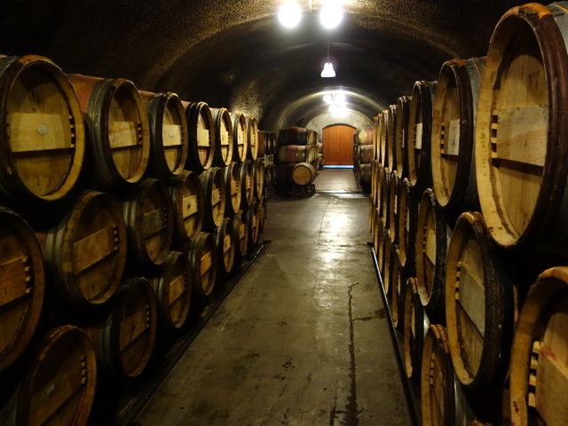 """Oak barrels in the wine cavern on LMR's Mayacamas Estate,Napa wine country"""