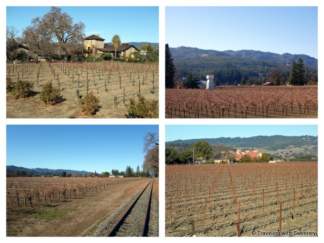 """Scenery of the Napa Valley in winter as seen from the Wine Train"""