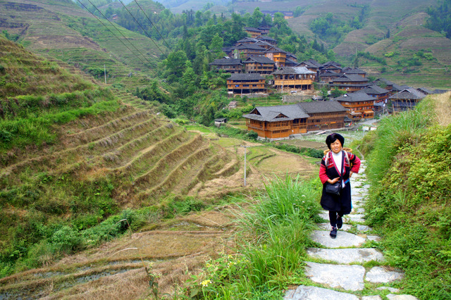 """Woman walking in the Longi terraced fields in Guilin, China"""