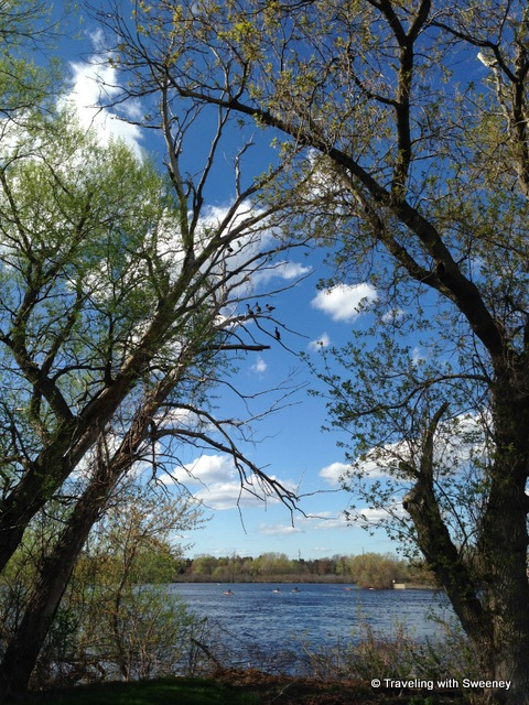 """Blue skies and birds in the trees along the Menominee River in Marinette, Wisconsin"""