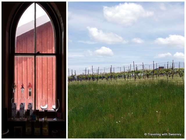 """Looking through the old church window and beautiful vineyard of Avondale Sky Winery , Nova Scotia"""
