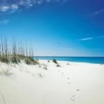 Gulf Coast Dreaming: Panama City Beach
