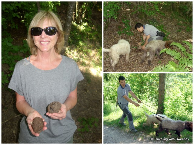 """Truffle hunting in the woods near Portico di Romagna, Italy"""
