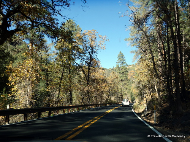 """Through the forests on the canyon road between Sedona and Flagstaff, Arizona"""