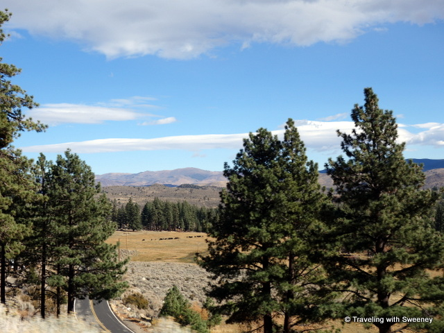 """""""Carson Valley, Nevada on a gorgeous mid-November day"""""""
