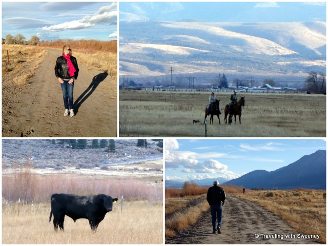 """Things to do in Carson Valley, Barrie Seidenberg"""
