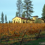 Wining, Dining, and Mining in El Dorado County