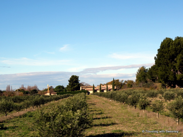 Sunny winter day in the countryside near Cavaillon, in the Vaucluse department of France