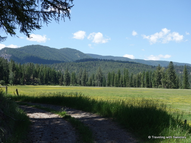 Beautiful meadow on the  Black Bear Ranch in Superior, Montana