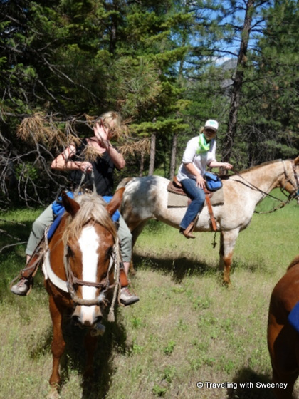 Sweeney gets tangled up in branches -- her only incident on the trail ride in Superior, Montana