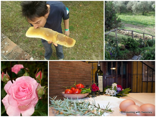 Nic sampling fresh honey, steps to the garden, fresh flowers and organic products of La Novellina