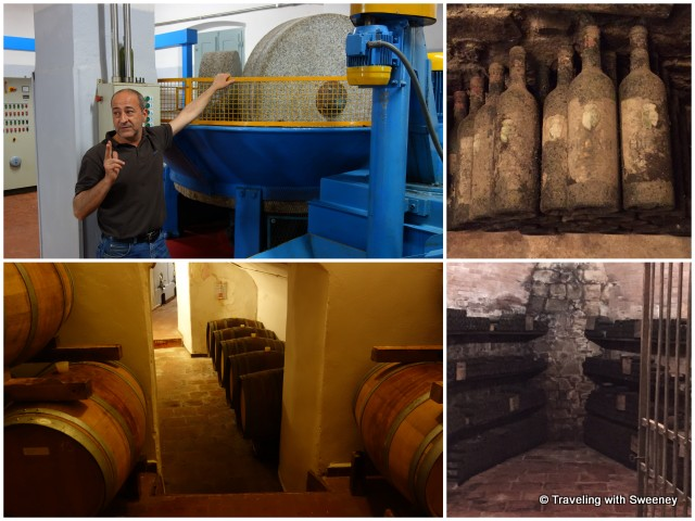 Touring the olive mill and wine cellars with Massimo Castagnozzi at Pasolini dall'Onda