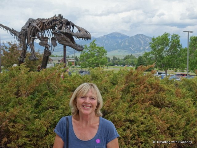 T. rex and me: Dinosaur skeleton sculpture at the Museum of the Rockies