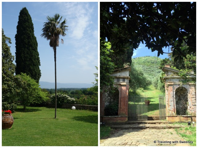Palm tree and stone gate on the grounds of Villa Buonvisi