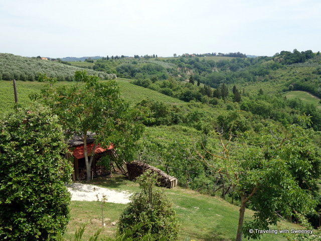 Views of the Tuscan hills, vineyards and olive groves from Casa Egle
