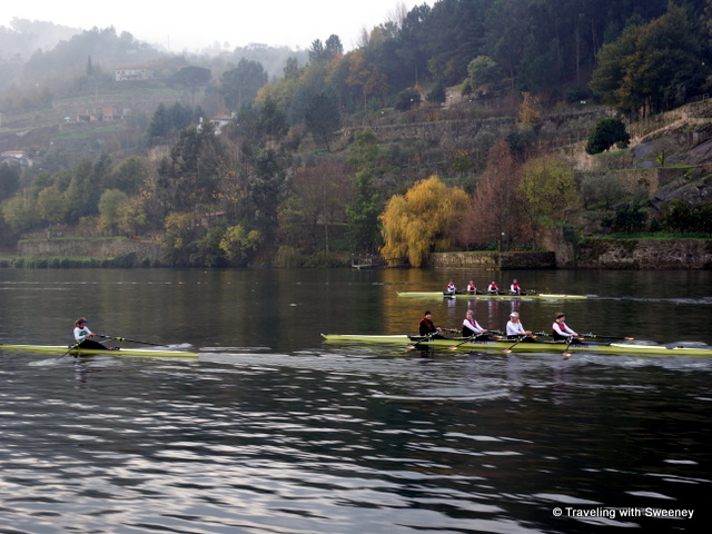 Rowing crews pass alongside the Viking Hemming on the Douro River, Portugal