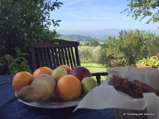 View from La Novellina terrace at breakfast