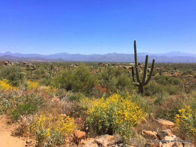 Bootlegger Trail accessed from the Granite Mountain Trailhead in northeastern Scottsdale