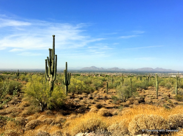 Dramatic view of the valley under gorgeous blue skies from the Levee Trail -- easy hiking and biking in Scottsdale